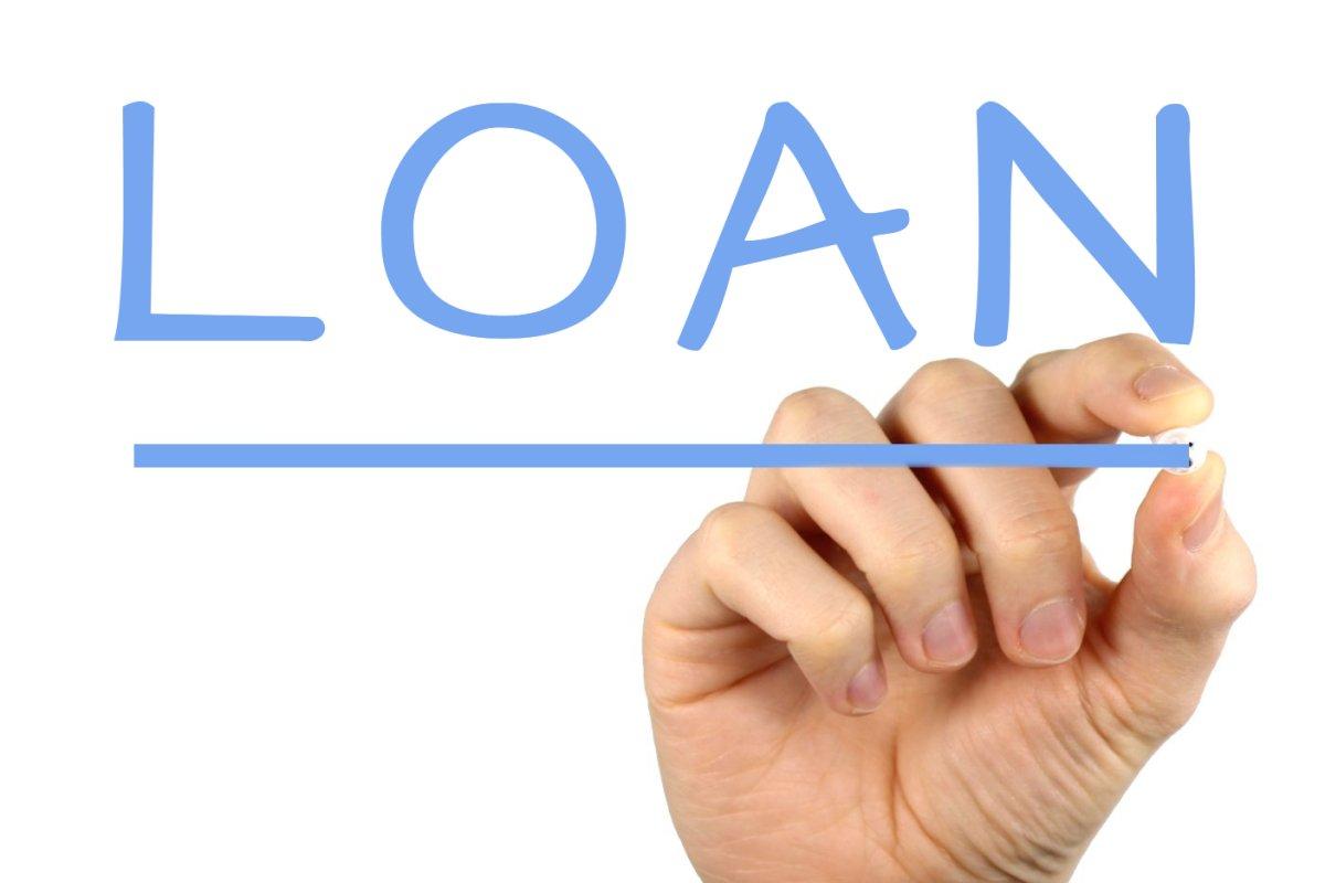 loan borrower